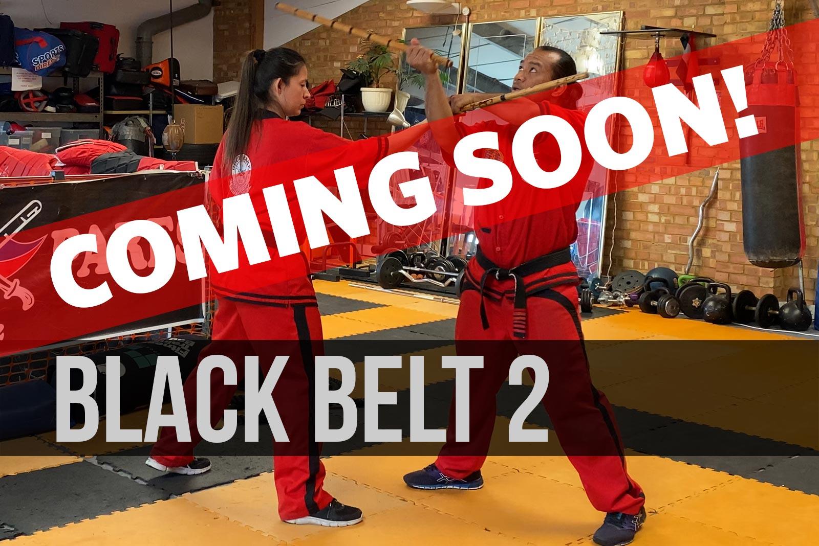 black-belt-2-coming-soon