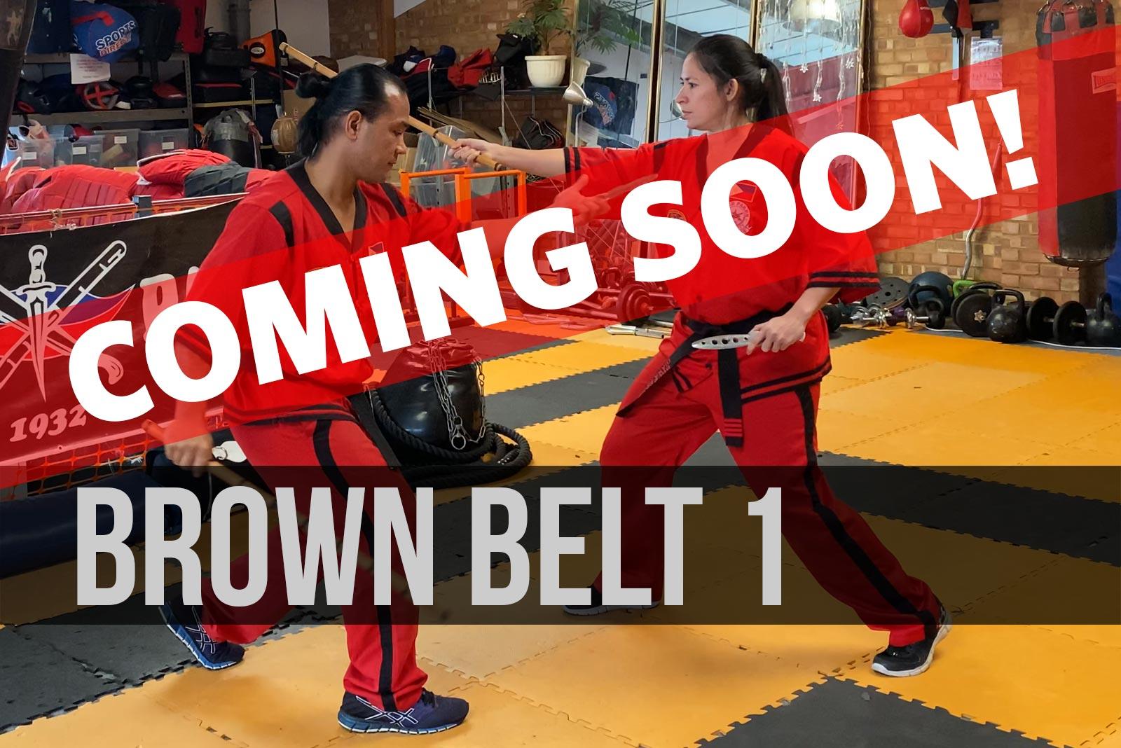 brown-belt-1-coming-soon