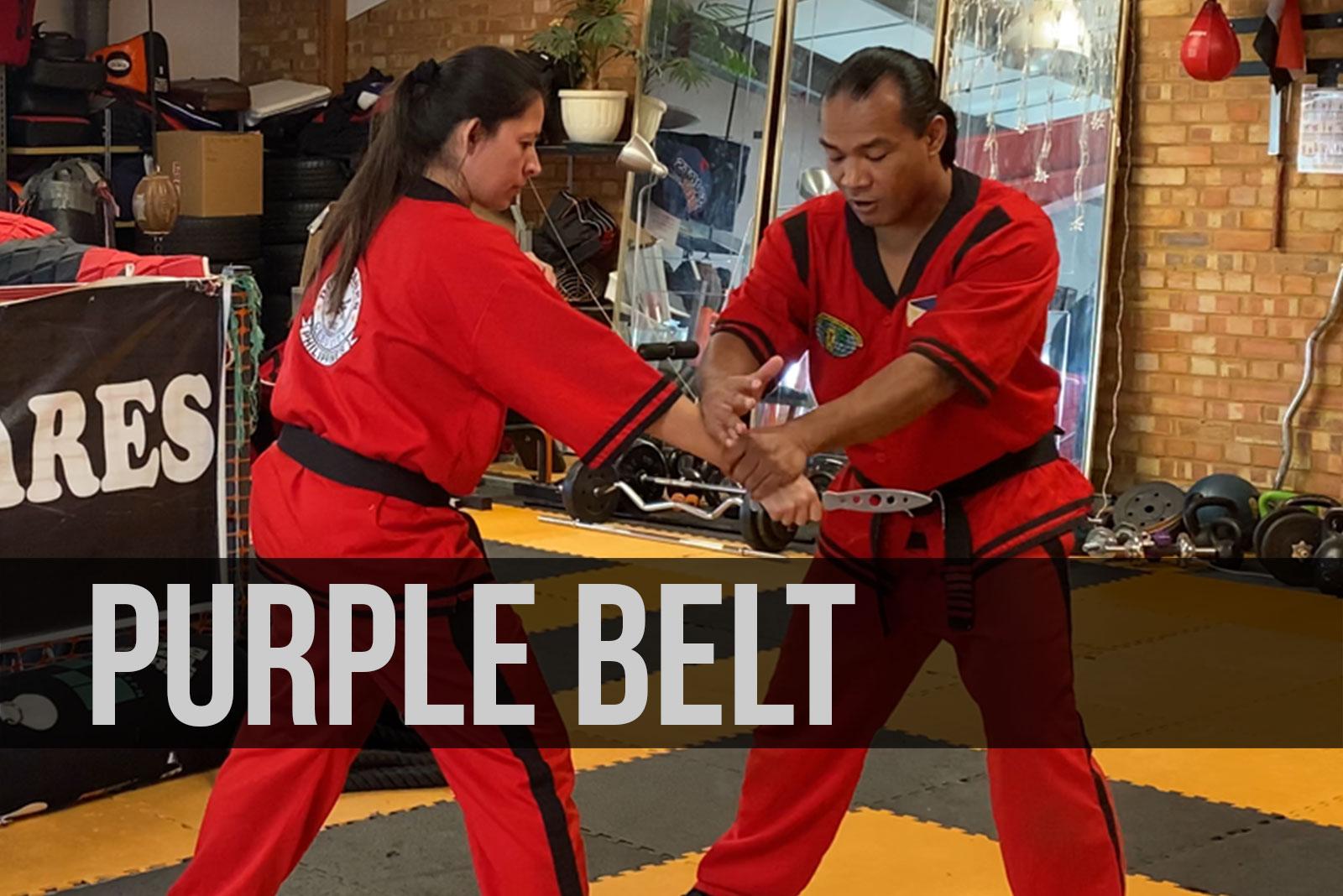 purple-belt-course-menu